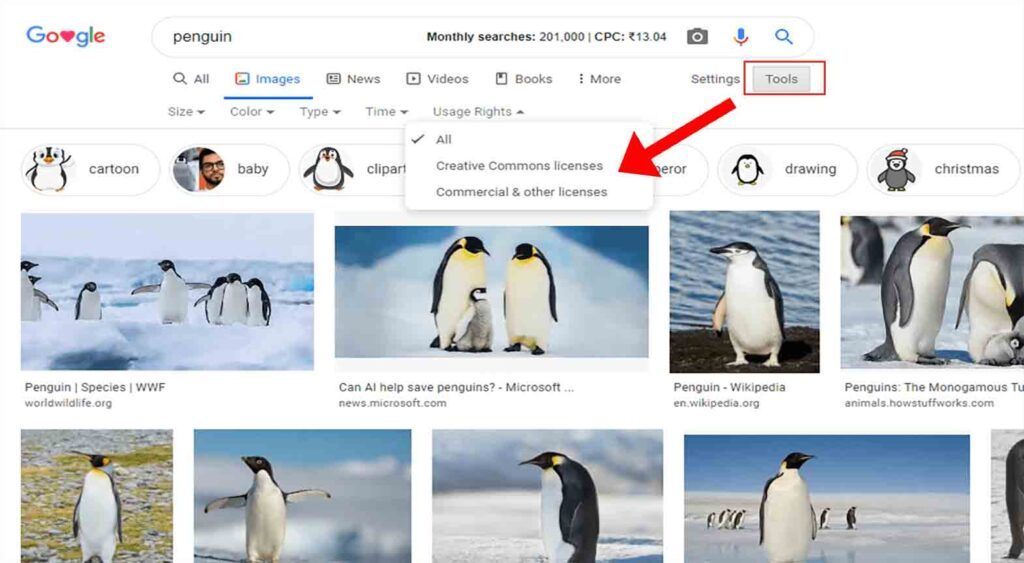 Best Image Search Engine Google